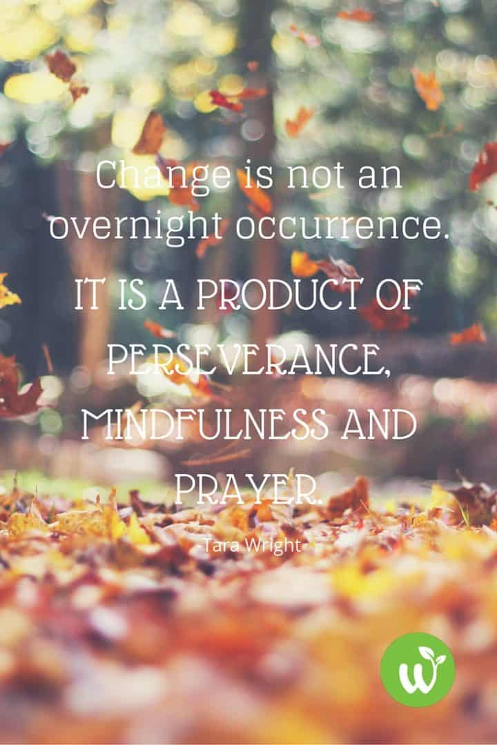 PIN Change is not an overnight occurrence. It is a product of perseverance, mindfulness and prayer. -Tara Wright