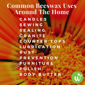 IN Common Beeswax Uses Around The Home