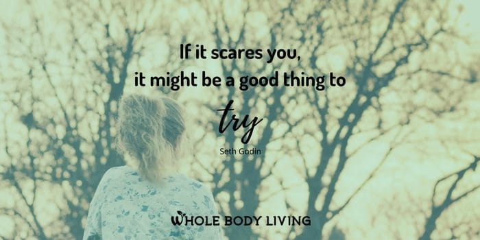 hb-if-it-scares-you-it-might-be-a-good-thing-to-try-seth-godin